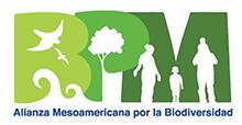 Logo for BPM