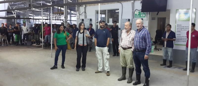 Gira a Platanera Río Sixaola, pionera en sostenibilidad