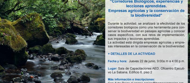 Taller Corredores Biológicos, Experiencias y Lecciones Aprendidas