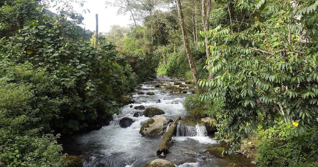 savegre_river-_costa_rica